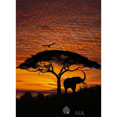 Mural NATIONAL GEOGRAPHIC 4-501 African Sunset
