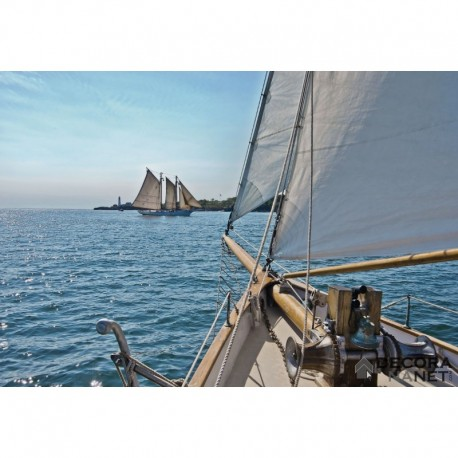 Fotomural NATIONAL GEOGRAPHIC 8-526 Sailing