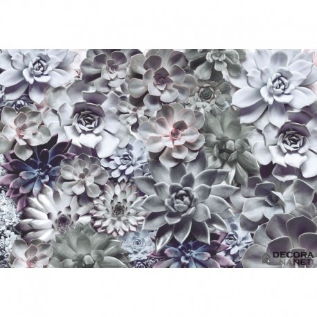 Mural FLORAL AND WELLNESS 8-962 Shades
