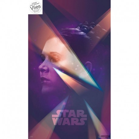 Mural STAR WARS by KOMAR VD-025 Star Wars Female Leia
