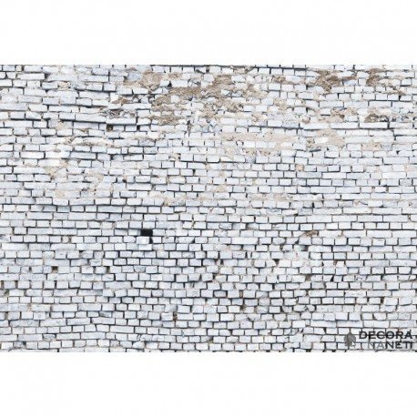 Fotomural WOOD AND STONES 8-881 White Brick