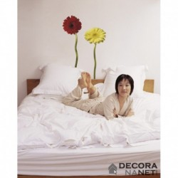 Wall Sticker FLORAL AND WELLNESS 17011 Gerbera