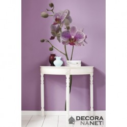 Wall Sticker FLORAL AND WELLNESS 17702 Orchidee