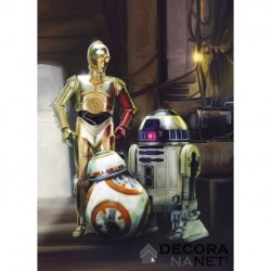 Fotomural STAR WARS by KOMAR 4-447 Star Wars Three Droids