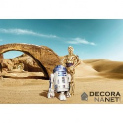 Fotomural STAR WARS by KOMAR 8-484 Star Wars Lost Droids